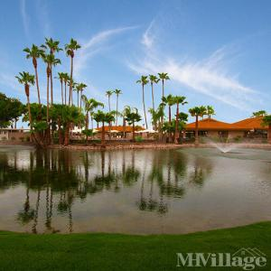 Photo of Palmas Del Sol East 55+ Resort Community, Apache Junction, AZ