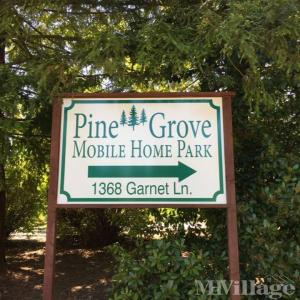 pine grove senior singles Local housing authority contact listing pine grove manor 293 high street dalton, ma 01226 413 684 2493 danvers housing authority 14 stone street danvers, ma.