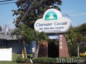 Photo of Clearwater Cascade, Pinellas Park, FL