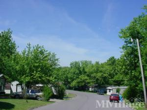 Photo of Cherry Hill Mobile Home Park, Williamstown, KY