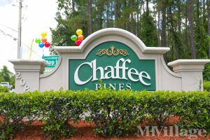 Photo of Chaffee Pines, Jacksonville, FL