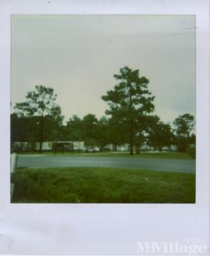 Photo Of Palmetto Point Mobile Home Community Kingsland GA