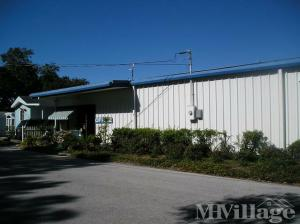 Photo Of Sherwood Forest RV Park Palm Harbor FL