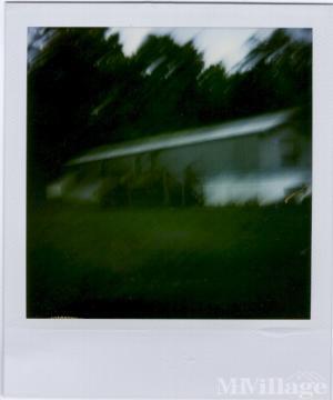 Piney Grove Mobile Home Park Kernersville