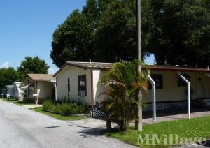 Photo Of Frontier Village Mobile Home Park Palm Harbor FL