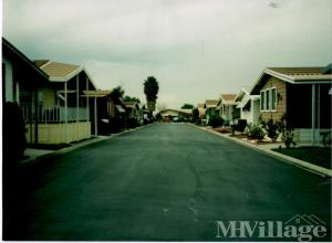 Photo of Desert Shores Trailer Park, Thermal, CA