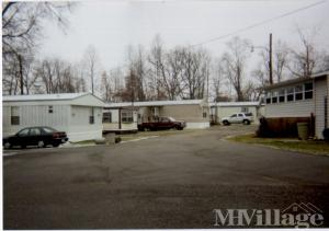 Photo of Flatwoods Trailer Park, Flatwoods, KY