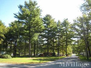 Photo of Pine Grove, Cuddebackville, NY