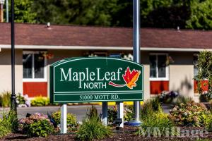 Photo of Maple Leaf North, Canton, MI