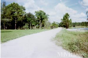 Photo of Lake Trafford Farms, Immokalee, FL