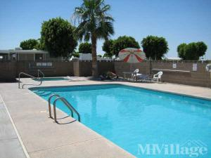 Photo of Cactus Gardens RV Resort, Yuma, AZ
