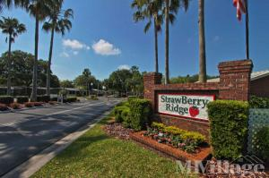 Photo of StrawBerry Ridge, Valrico, FL