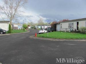 Photo of Creswell Court, Creswell, OR
