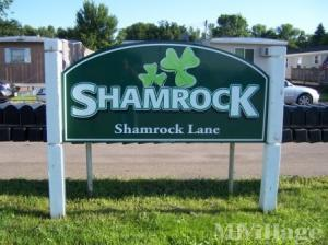 Photo of Shamrock, Albany, MN