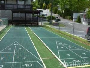 Photo of Tice Mobile Home Court, Tice, FL