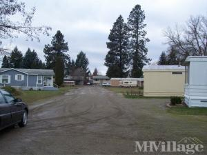 Photo of Tall Pines Mobile Home Park, Coeur D Alene, ID