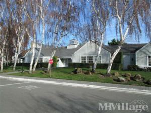 Photo of Cape Cod Village, Sunnyvale, CA