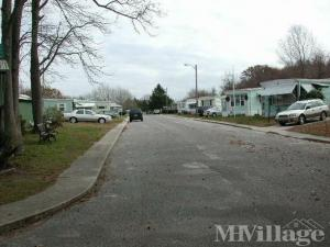 Photo of Westwood Mobile Estates, West Cape May, NJ