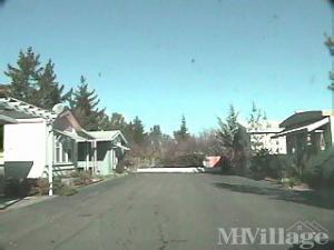 Photo Of Blue Spruce Mobile Home Lodge Sebastopol CA