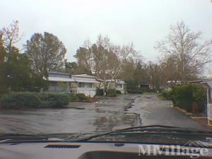 Photo Of Live Oak Park Kelseyville CA