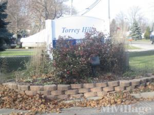 Photo of Torrey Hills, Flint, MI
