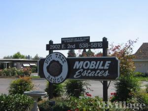 Photo of Nut Tree Ranch Mobile Home Park, Newberg, OR
