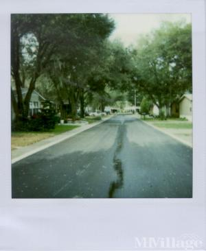 Photo of Bay Hills Village, Thonotosassa, FL