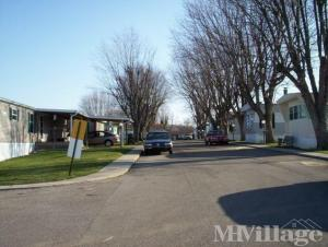 Photo of Dillsboro Mobile Home Park, Dillsboro, IN