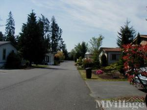 Photo of Country West , Puyallup, WA