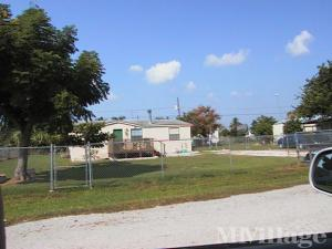 belle glade senior personals See all 11 apartments in belle glade, fl currently available for rent each apartmentscom listing has verified availability, rental rates, photos, floor plans and more.