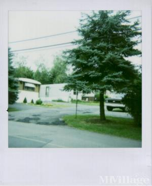 Photo of White Birch Trailer Park, Coal Township, PA