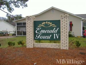 Photo of Emerald Forest, Myrtle Beach, SC