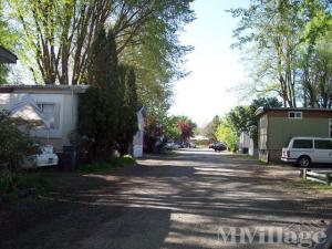 Photo of Rustic Mobile Home & Rv Park, Central Point, OR